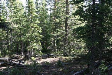 687 PRUNES PLACE FAIRPLAY, Colorado - Image 12