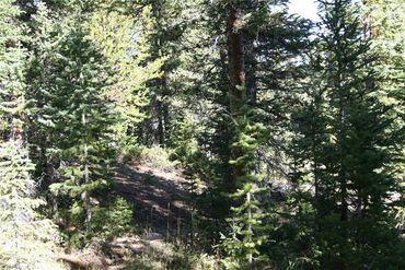 687 PRUNES PLACE FAIRPLAY, Colorado - Image 13