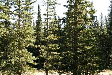 687 PRUNES PLACE FAIRPLAY, Colorado - Image 14
