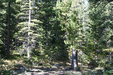 687 PRUNES PLACE FAIRPLAY, Colorado - Image 15
