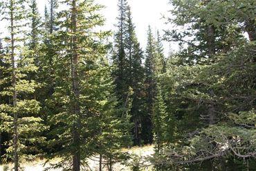 687 PRUNES PLACE FAIRPLAY, Colorado - Image 16