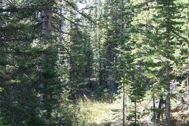 687 PRUNES PLACE FAIRPLAY, Colorado - Image 17