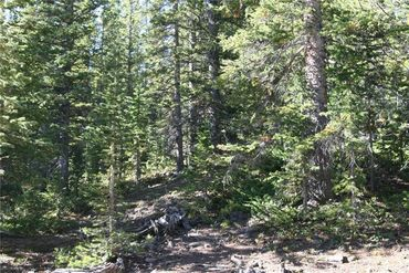 687 PRUNES PLACE FAIRPLAY, Colorado - Image 18