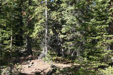 687 PRUNES PLACE FAIRPLAY, Colorado - Image 19