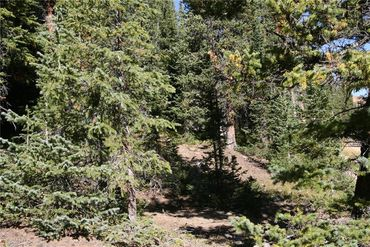 687 PRUNES PLACE FAIRPLAY, Colorado - Image 20