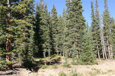 687 PRUNES PLACE FAIRPLAY, Colorado - Image 3