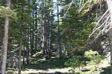 687 PRUNES PLACE FAIRPLAY, Colorado - Image 21