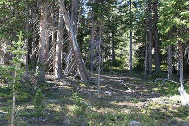 687 PRUNES PLACE FAIRPLAY, Colorado - Image 22