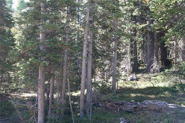 687 PRUNES PLACE FAIRPLAY, Colorado - Image 23