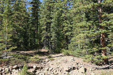 687 PRUNES PLACE FAIRPLAY, Colorado - Image 24