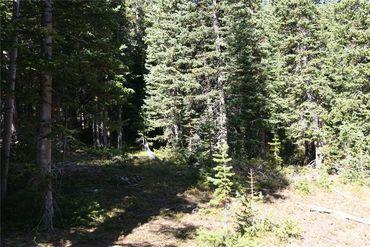 687 PRUNES PLACE FAIRPLAY, Colorado - Image 6