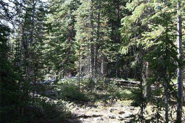 687 PRUNES PLACE FAIRPLAY, Colorado - Image 7