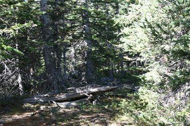 687 PRUNES PLACE FAIRPLAY, Colorado - Image 8