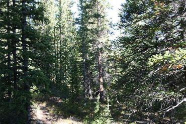 687 PRUNES PLACE FAIRPLAY, Colorado - Image 9