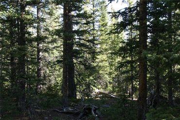 687 PRUNES PLACE FAIRPLAY, Colorado - Image 10