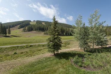 214 Wheeler PLACE # 7 COPPER MOUNTAIN, Colorado - Image 6