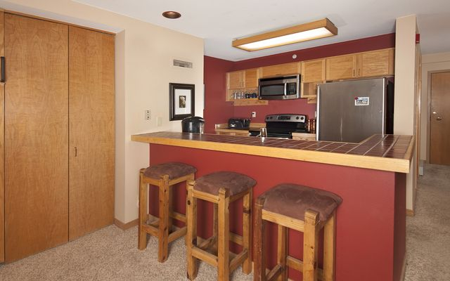 Liftside At Keystone Condo # 106 - photo 3