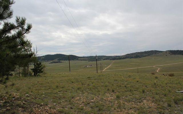 111 MESA VERDE WAY HARTSEL, Colorado 80449