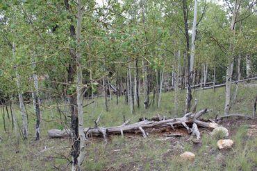 111 MESA VERDE WAY HARTSEL, Colorado - Image 12