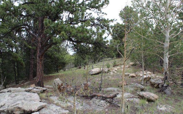 111 Mesa Verde Way - photo 3
