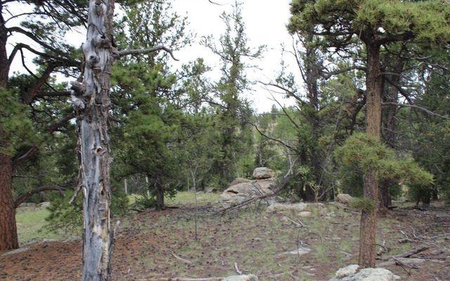 111 Mesa Verde Way - photo 4
