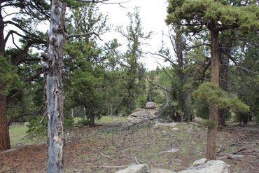 111 MESA VERDE WAY HARTSEL, Colorado - Image 5