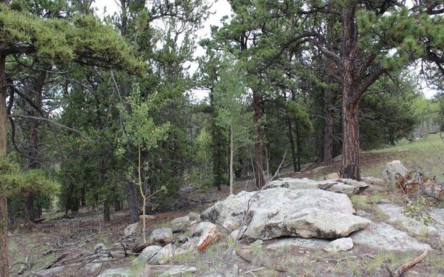 111 Mesa Verde Way - photo 5