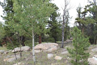 111 MESA VERDE WAY HARTSEL, Colorado - Image 7