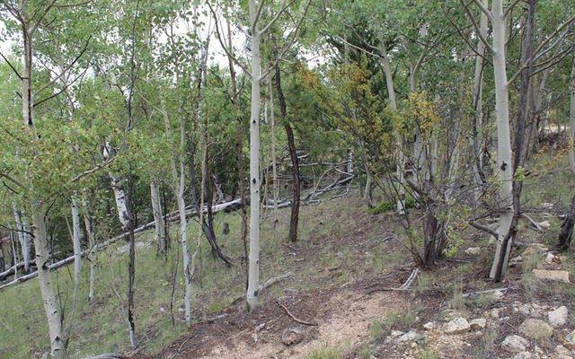111 Mesa Verde Way - photo 8