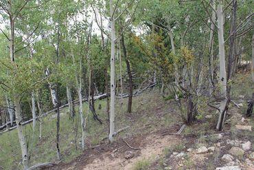 111 MESA VERDE WAY HARTSEL, Colorado - Image 9