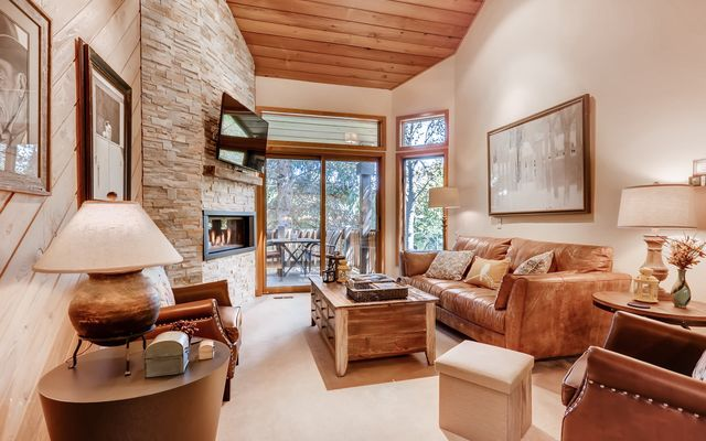 149 Willis Place # 165 Beaver Creek, CO 81620