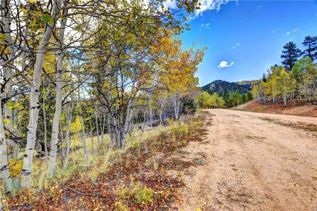 365 BONUS GULCH WAY JEFFERSON, Colorado 80456