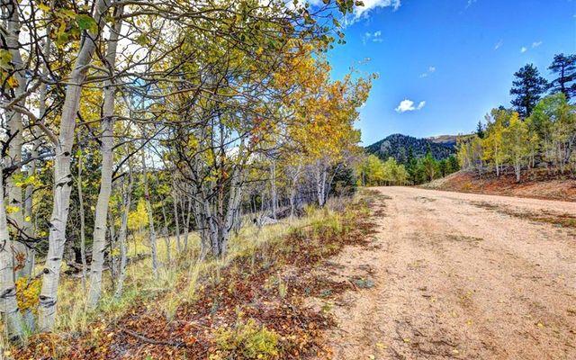 365 BONUS GULCH WAY JEFFERSON, Colorado 80456