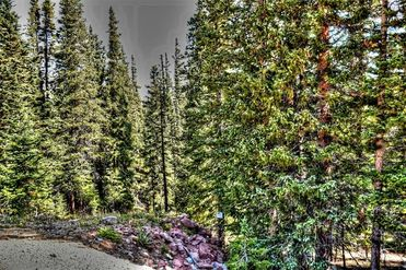 TBD SILVERHEELS CIRCLE FAIRPLAY, Colorado 80440 - Image 1