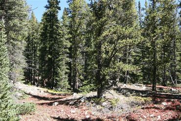 0 Co Rd 8 ALMA, Colorado - Image 22