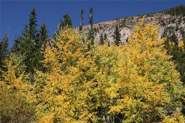 0 Co Rd 8 ALMA, Colorado - Image 25