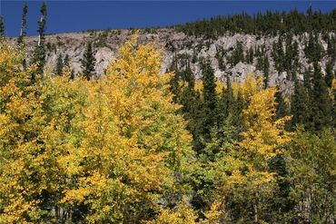 0 Co Rd 8 ALMA, Colorado - Image 10