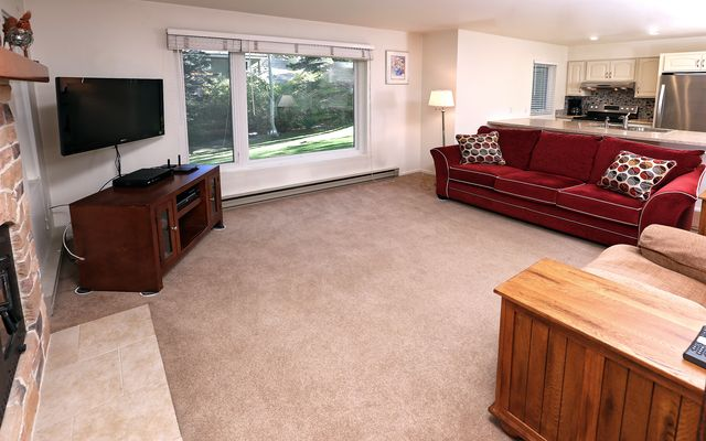 Homestead Meadow Condo # 41 - photo 2