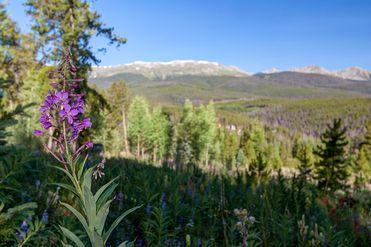 1072 American WAY BRECKENRIDGE, Colorado 80424 - Image 1