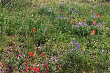 Photo of 1072 American WAY BRECKENRIDGE, Colorado 80424 - Image 5