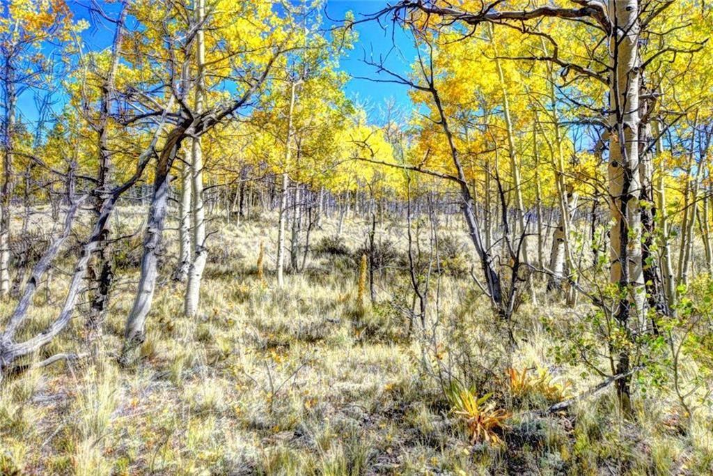 99 SORA COURT COMO, Colorado 80432