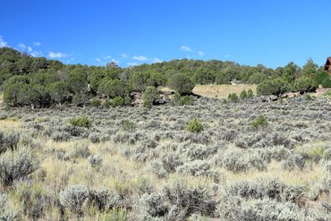 1037 Hernage Creek Road Eagle, CO - Image 3