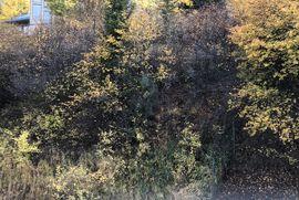 616 Deer Boulevard # B Avon, CO 81620 - Image