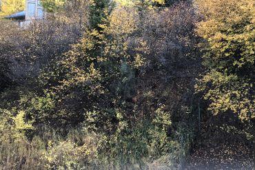 616 Deer Boulevard # B Avon, CO - Image 20