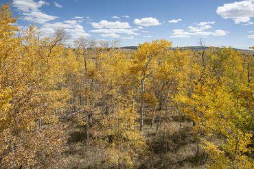 1026 PALMER PEAK DRIVE FAIRPLAY, Colorado - Image 32