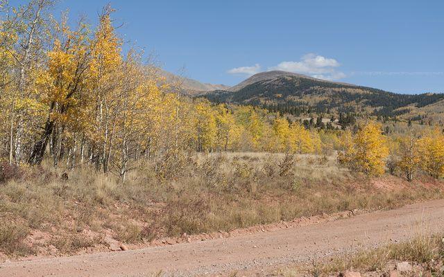 1026 Palmer Peak Drive - photo 32