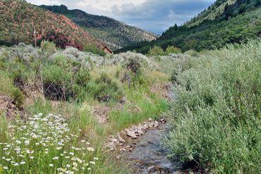 2210 Salt Creek Road Eagle, CO 81631 - Image 2