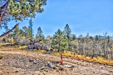 1200 SIGNAL RIDGE ROAD COMO, Colorado - Image 7