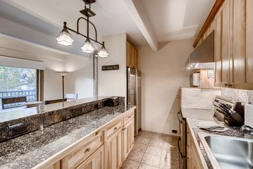 508 E Lionshead Circle # 314 Vail, CO - Image 8