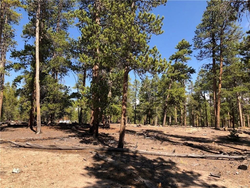 776 Peak View Dr TWIN LAKES, Colorado 81251